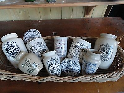10  x Late Victorian / Edwardian Stoneware Advertising Pots / Lid  circa 1900-20