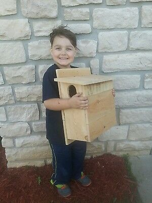 2 Cedar Squirrel House, Nesting Box ~ Three Brothers Birdhouses