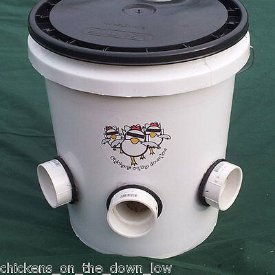 Poop-Free Feeder for Backyard Chickens