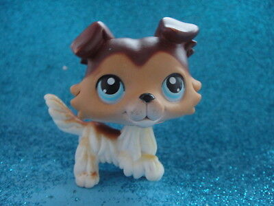 ORIGINAL lps Littlest Pet Shop Collie DOG # 58  Shipping with Polish