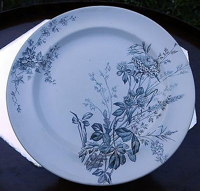 Antique English Pottery : Burgess & Leigh large Plate -  C.19thC