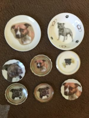 Staffordshire Bull Terrier Dog China Plates/bowl Collection