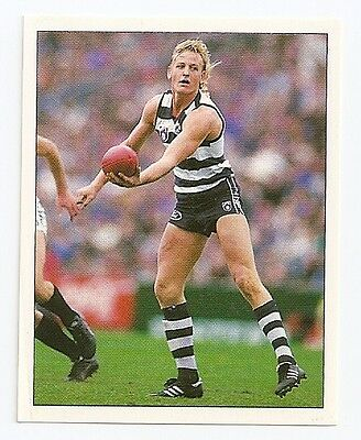 1994 SELECT  VFL/AFL FOOTBALL STICKER #133 Barnes nMINT (Geelong)