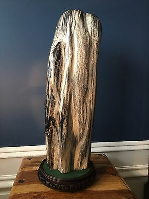 Indonesian Petrified Wood Sculpture