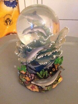 Dolphin Musical Water Globe
