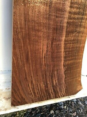 R42 Black Walnut Lovely Subtle Rippling Heartwood - Sapwood Soft Stock Blank