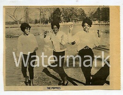 1960s Print Clippings   The Poppies   R&B Soul Girl Group   Dorothy Moore
