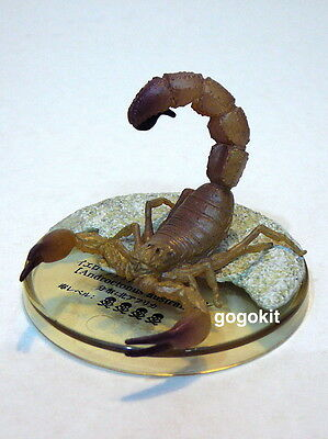 Takara Tomy Arts Encyclopedia of Scorpion Androctonus Australis Figure Gashapon