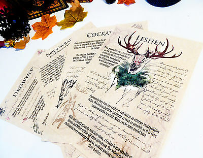Bestiary Witcher inspired journal pages. Noonwraith, Cockatrice, Leshen, Drowner