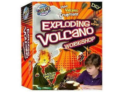 Tree Toys EXPLODING VOLCANO WORKSHOP 8+ yrs - Board Game - Wild Science Lava