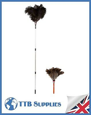 "MULTI PACK Genuine Dustease Premium Ostrich Feather Duster - 12""+ 48-90"""