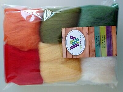 30 g Pure Wool Tops for felting 6 colours set, Autumn