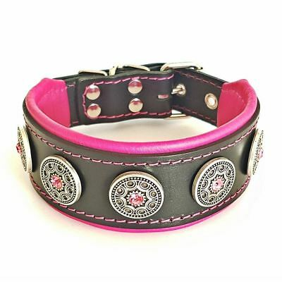 "Bestia ""Bijou"" premium leather dog collar. Studded. Soft padded. 2 inch wide"