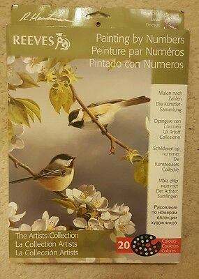 Reeves Painting by Numbers The Artists Collection. Birds. 20 colour Paints.