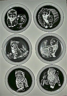 Kittens World Collector Plates Price for 1 or take set of 6 1979 Signed Droguett