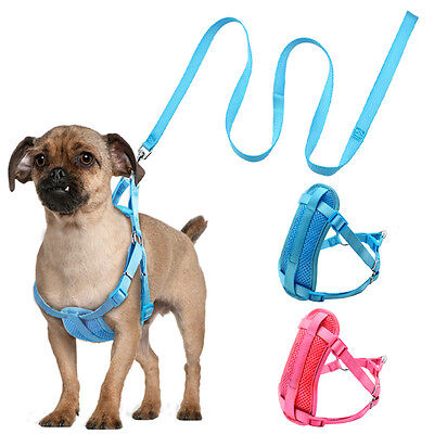 STEP-IN DOG HARNESS and Leash set No Pull for Small Dogs Puppy ...