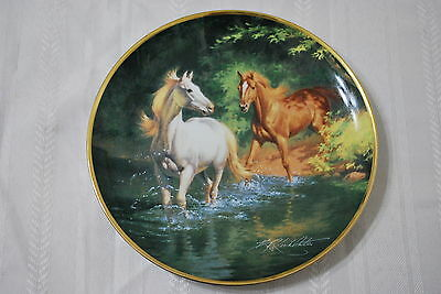 Franklin Mint  Decorative Plate - Free as the Wind   - Nice!!