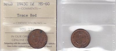 1943C ICCS MS60 1 cent Trace Red Newfoundland NFLD NF one penny