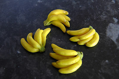 dolls house miniature food , 1:12th scale , bunch of bananas by TinLyds