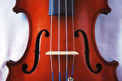 Old Antique J. B. Colin 4/4 French Violin 1907, Excellent!