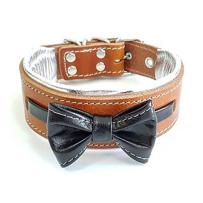 Bestia genuine leather dog collar. S to XL size. hand crafted. Soft padded.