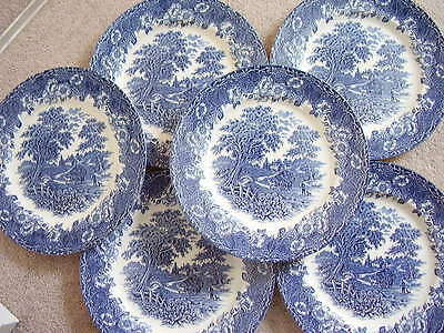 English Ironstone porcelain blue and white dish-plate,set of 6