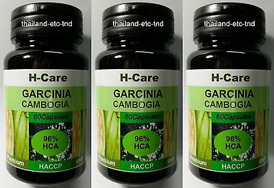 (x3)GARCINIA CAMBOGIA HCA 96% 3000mg DAILY ORGANIC DIET WEIGHT LOSS FAT LOSS
