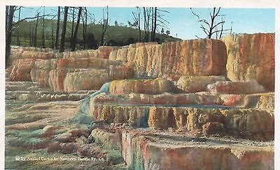 Vintage Postcard - Angel Terrace - Yellowstone Park, Wyoming  Pc1072