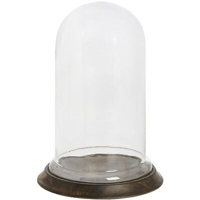 Large Glass Display Cover / Dome / Cloche with Wooden Base 31,5 cm