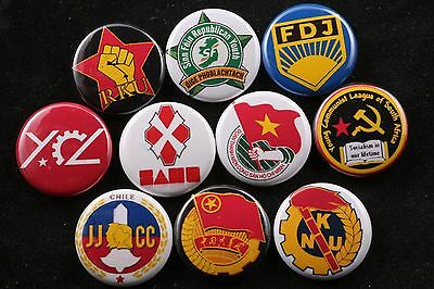 World Anti-Fascist Party Youth Wing Lot Pin Badge Button America Labor 1""