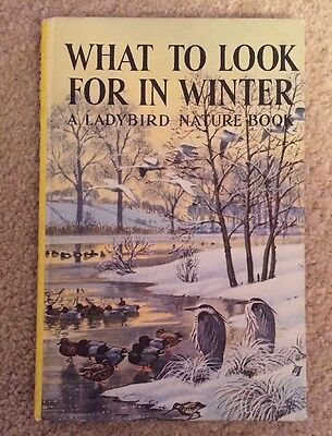 Ladybird What to Look for in Winter - Grant Watson - Ills Tunnicliffe 2/6