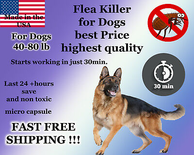 25 instant Flea Killer for Dogs 40-80lb plus Shampoo Bar Soap Sample Control NEW