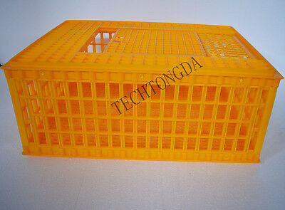Poultry Chicken Transport Coop Crate Cage (#170599)