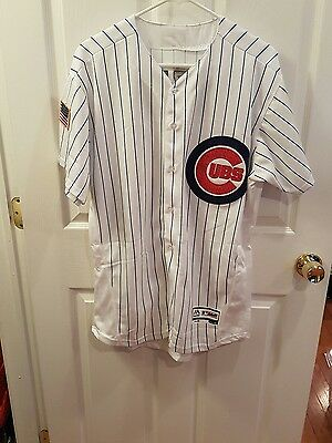 Chicago cubs Anthony rizzo#44 pinstripes large flexbase