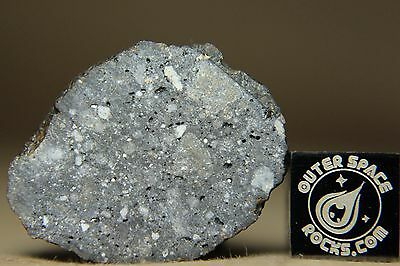 NWA 10973 Lunar Feldspathic Regolith Breccia Meteorite from the Moon 10.39 grams