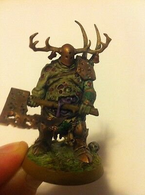 Warhammer Fantasy Age Of Sigmar Chaos Nurgle Daemon Army Painted Lord Of Plagues