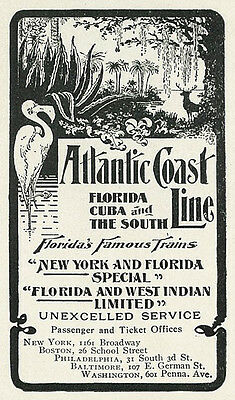 1904 Atlantic Coast Line Florida Cuba Swamp Flamingo Vintage Original Print Ad