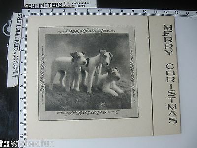 Merry Christmas - Dogs Terriers(?)- Vintage Greeting Card