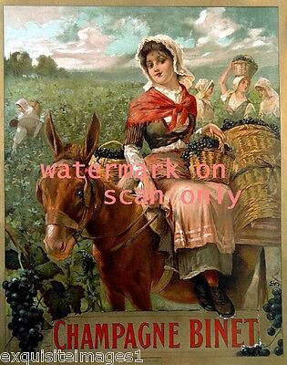 c1900 Champagne Binet~Girl on Donkey~Mule~Burro~Vineyard~Grapes~NEW Note Cards