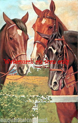 Vintage Colored Artwork~3 Horses at Fence~ NEW Large Note Cards