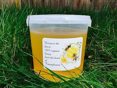 1.5 Kg Of 100% Pure Natural Raw Organic  Linden & Field Honey  Harvester 2016