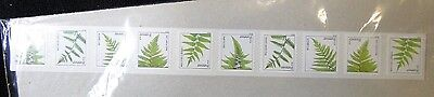 #4874 - 4878 Plate Number Ferns Forever Coil strip of 25  MNH free shipping