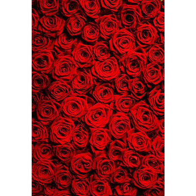 5x7FT Red Rose Photography Background Photo Cloth Backdrops Studio Lover Wedding