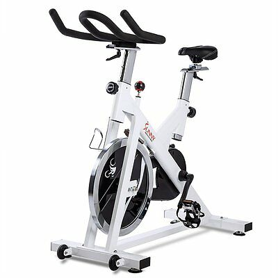 Sunny SF-B1110 Indoor Cycling Bike