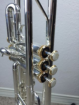 "NEW Wisemann DTR-500SP New  ""C"" Silver Trumpet with Gold Trim Great Value  Horn"