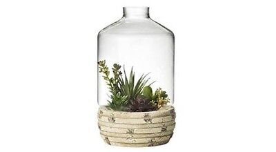 Terra Vase Glass And Wood Terrarium Succulents Display Home Wedding Decor
