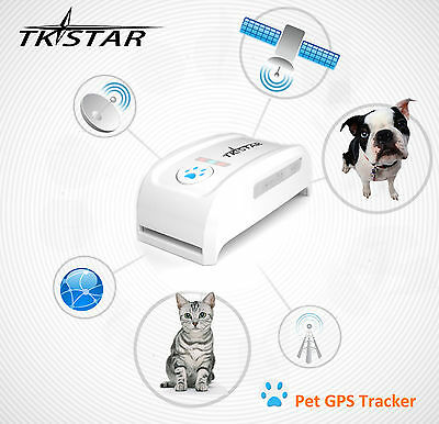 Gps Pet registrador Collar de datos de Tracker Para Gatos Perros Mascotas PS013