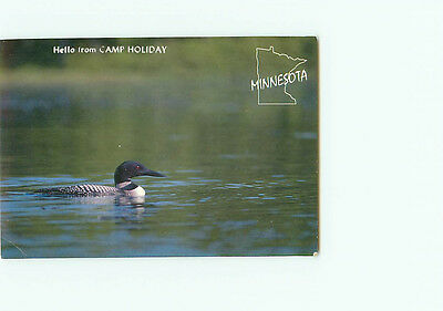 Vintage Postcard Camp Holiday Common Loon State Bird Minnesota  # 3189