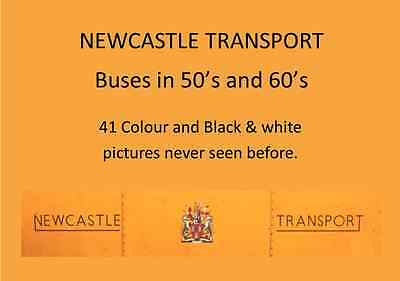 Newcastle Transport buses in the 50's and 60's