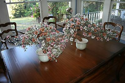 """2 Vintage Asian / Chinese / Oriental Bonsai Glass Trees Large 30""""L x 18""""T"""